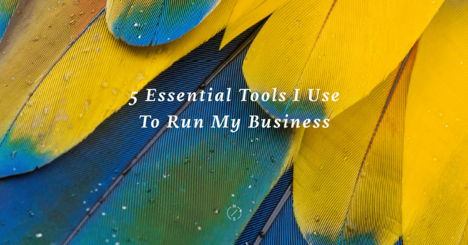 5-Essential-Tools-for-Small-Businesses-Nadia-Soucek-Design