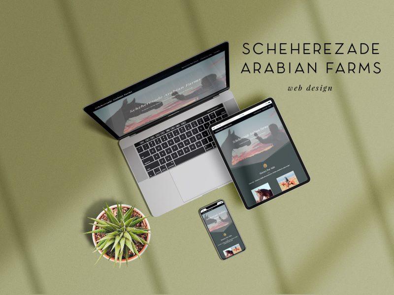 ns-design-scheherezade-arabian-farms-web-design